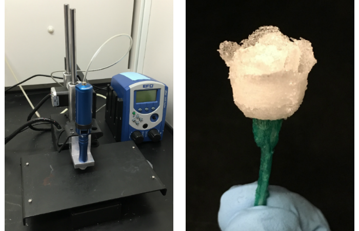 Setup previously used by the PI to 3D print cellulosic materials (left) and a demonstration part (right)